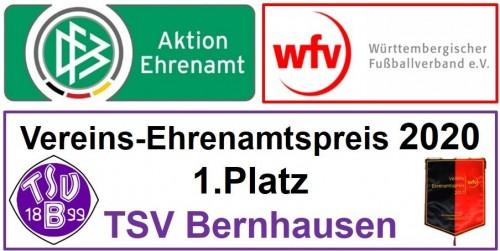 TSV Bernhausen gewinnt den Vereins-Ehrenamtspreis 2020